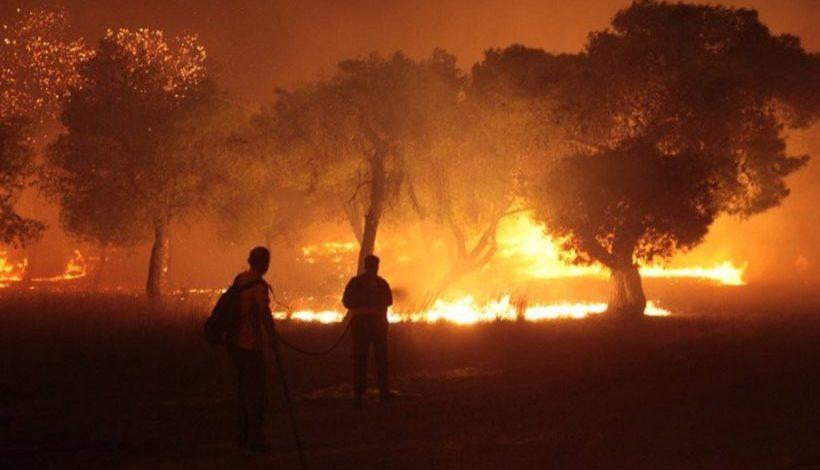 Δράση του Δικτύου Γυναικών για τα θύματα των πυρκαγιών
